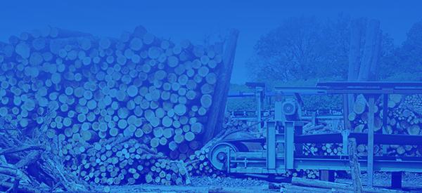 Деревообрабатывающая промышленность - (Станки, пресса, транспортёры)